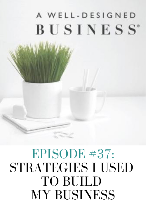 lesley-myrick-podcast-guest-luann-nigara-well-designed-business